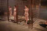 Free porn pics of Texas state female prison - Don`t mess with Texas! 1 of 40 pics