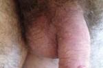 Free porn pics of Dick, balls & ass ring 1 of 15 pics