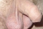 Free porn pics of My small uncut (peeing) dick with heavy balls... 1 of 17 pics